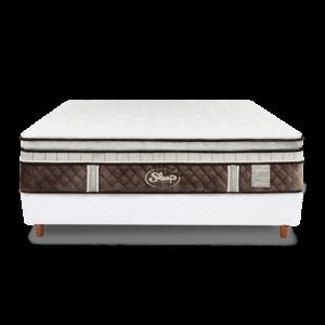 健康床墊mattress|鈦合金 HYBRID PLATINUM 鉑金|睡眠王國集團